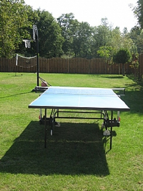 Table tennis, Badminton and Basketball available amongst other activities