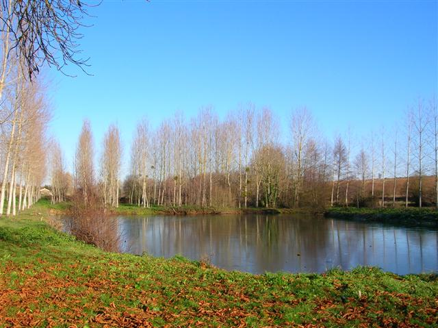 2  private fishing lakes with grounds of 5 bedroom watermill for holiday rental